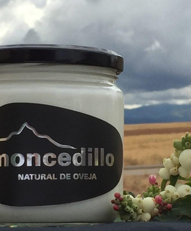 Moncedillo Yogur